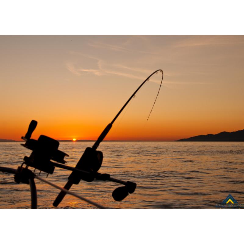 La importancia de una pesca sostenible