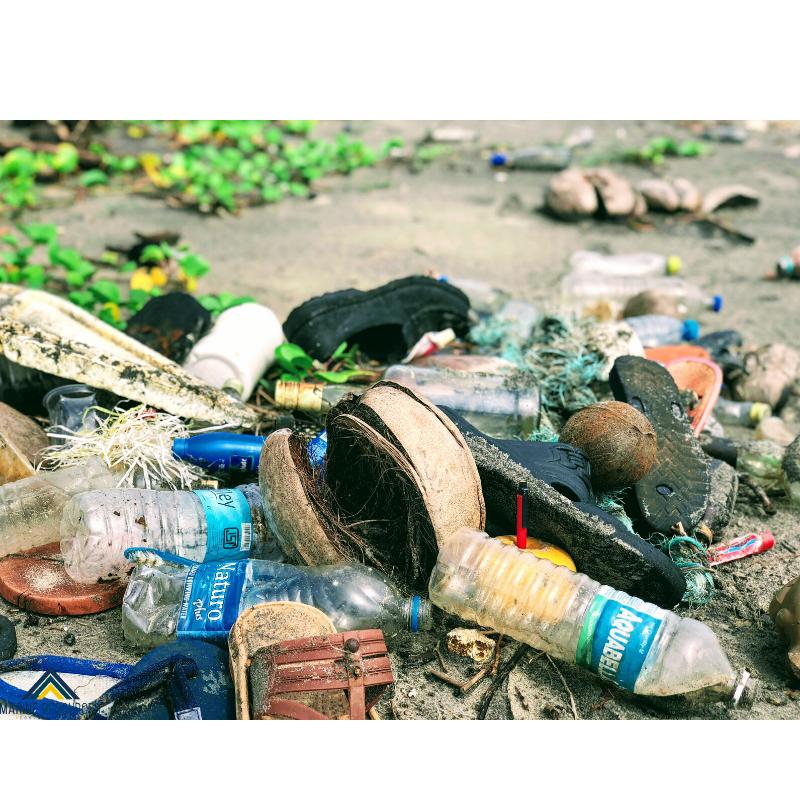 ¿Cómo gestionar el cambio para evitar y controlar los daños ambientales?