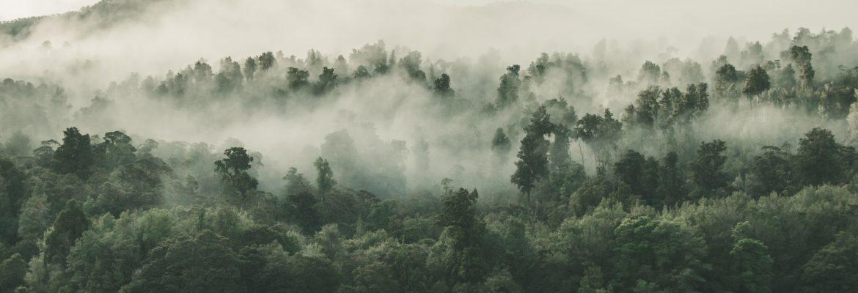 Preocupación ambiental