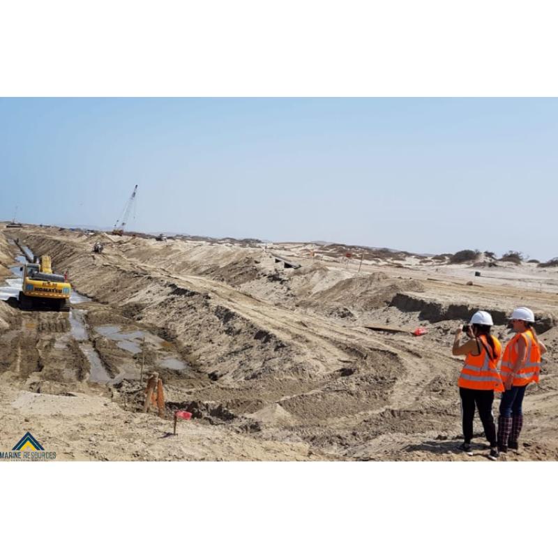 La gestión de producción minera