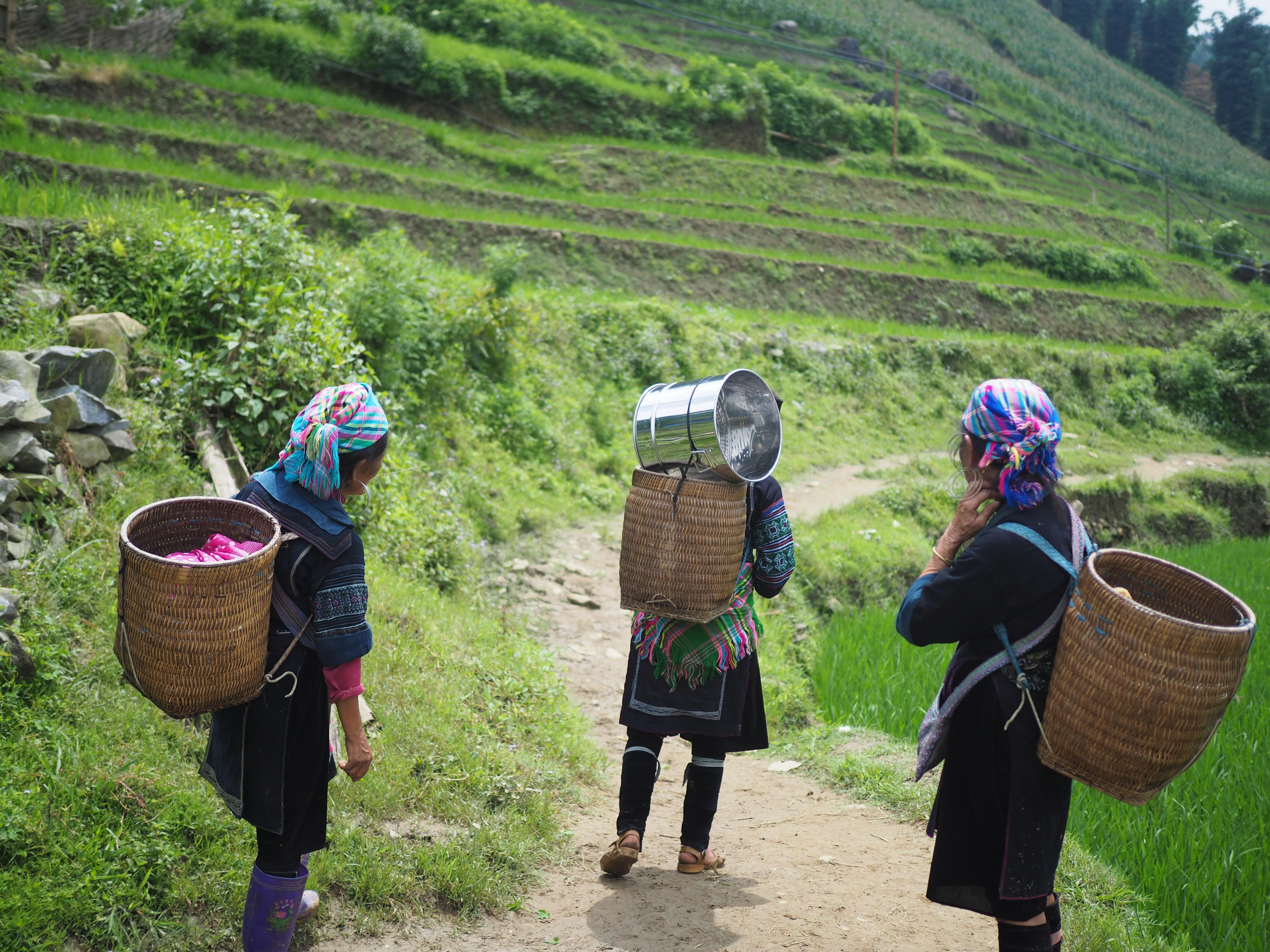 ¿Cómo fomentar la inclusión de la mujer en el mercado laboral?